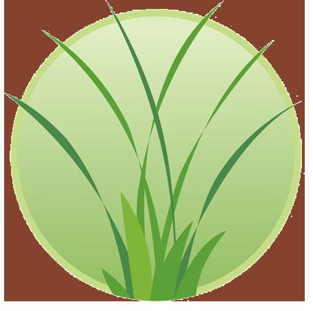 JAM Landscape & Design logo
